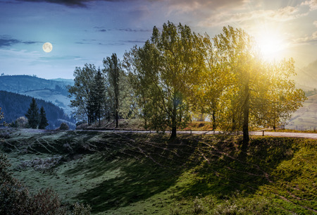 Day and night time change concept. range of poplar trees by the road on hillside. beautiful day in mountainous countryside with sun and moon 版權商用圖片