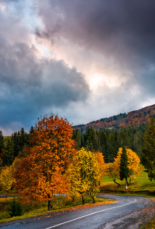 colorful foliage on serpentine in rainy fall weather. gorgeous cloudy sky over the mountains in evening Stock Photo