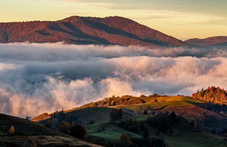 Rising clouds in mountainous countryside at sunrise. gorgeous view of autumn fog in valley Stock Photo