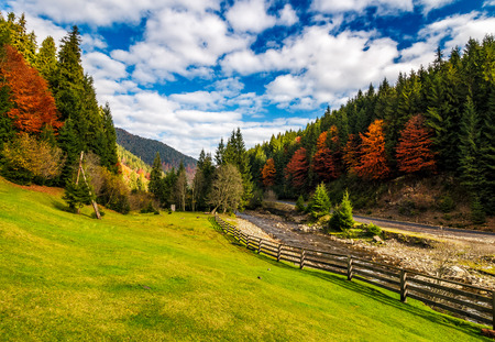 camping place meadow near forest in mountains. scene with wooden fence near calm river and few red foliage trees among spruce forest on hillside Stock Photo