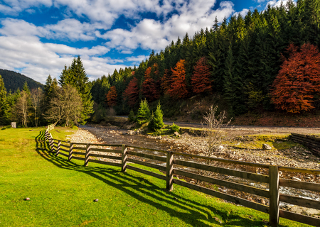 fence on the meadow near forest river in autumn mountains. few red foliage trees among spruce forest on hill Stock Photo