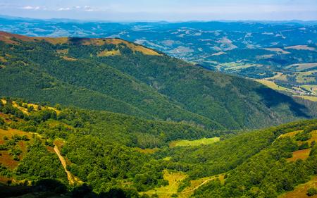 カルパティア山脈の森林。山の頂上からの眺め