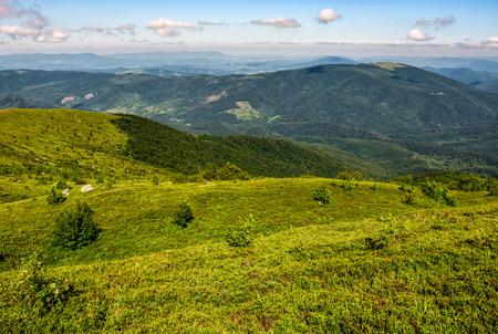 grassy hillside of Carpathian mountain range. beautiful mountain scenery in summer time