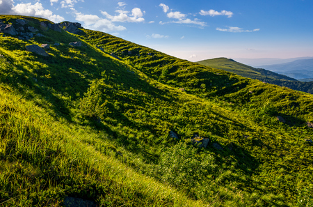 steep grassy slope in summer mountain. fresh and clear morning weather Stock Photo