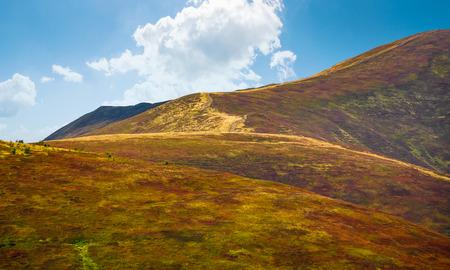 風化の草が茂った斜面の丘の中腹。カルパティア山の早い秋の風景