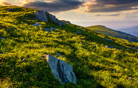 grassy meadow with boulders on mountain slope at sunrise. beautiful mountainous landscape background