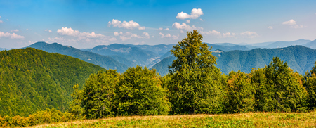 gorgeous mountainous panorama with forest in early autumn day Stock Photo - 83671976