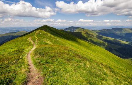 path through the grassy mountain ridge. beautiful summer landscape in fine weather with few clouds on a blue sky