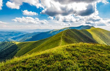 山の尾根の素敵な緑の草で覆われた丘。夏の曇り日にカルパティア山脈の豪華な山岳風景 写真素材