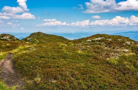 草が茂った丘の小道の岩こんにちは山の牧草地。夕方に山の尾根に