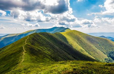 草が茂った丘を山尾根道。夏の曇り日にカルパティア山脈の豪華な山岳風景 写真素材