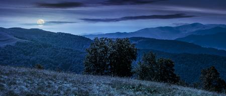 初秋の天気でカルパティア山脈の美しいパノラマ。満月の光で夜の雲と空の下海嶺の草が茂った斜面の背後にあるいくつかのブナ木のてっぺん