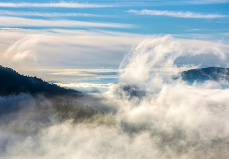 thick cloud formation rising from the forests in valley. dramatic view of nature process in mountains at autumn sunrise Stock Photo