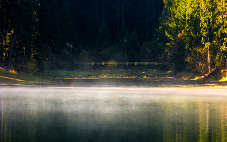 foggy surface of the forest lake at sunrise. beautiful nature background of colorful smoke rising over the water