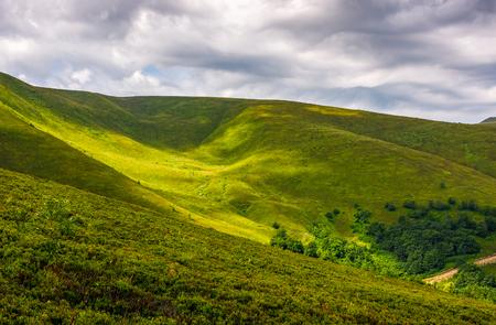Plek van licht op groene heuvel op bewolkte dag. Mooie zomer natuur achtergrond in bergen