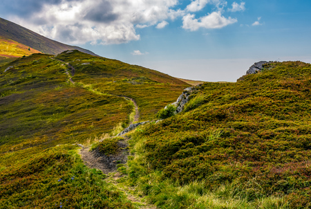 tourists curve path up the hill to the top. beautiful grassy mountain meadows with rocks on humps Stock Photo