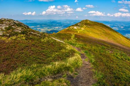 path through the grassy meadows on top of mountain ridge. Classic late summer travel background in Carpathian alps. Wonderful evening weather with blue sky and some clouds