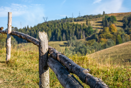 wooden fence wrapped by a wire on hillside near forest. beautiful countryside autumnal morning