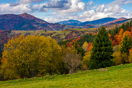 mountains with colorful foliage forest and rural fields in a distance. great autumnal landscape in fine weather and clouds on blue sky Stock Photo