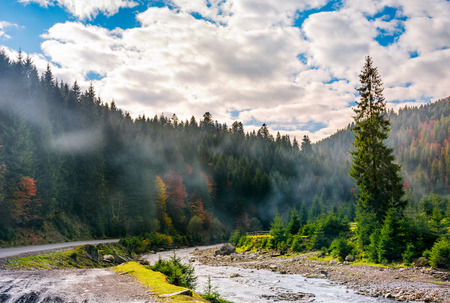 valley with river in foggy forest. Spectacular autumnal landscape in mountains