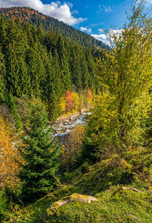 powerful mountain brook with rocky shore in valley. lovely autumnal nature background Stock Photo
