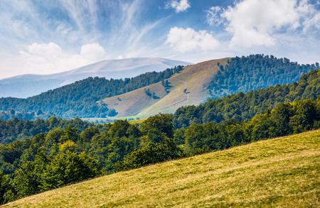 gorgeous early autumn landscape in mountains under blue sky with spectacular cloud formations. multi layered scene with meadow and forest on hillside and a hill with ridge in far distance