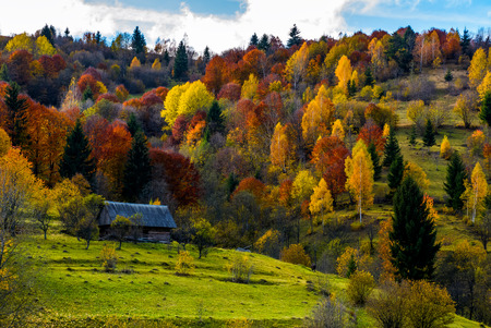 abandoned wooden house in shade of a cloud in autumn forest. beautiful rural scenery in mountains Stock Photo