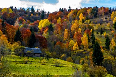 verlaten houten huis in schaduw van een wolk in de herfstbos. prachtig landelijk landschap in de bergen