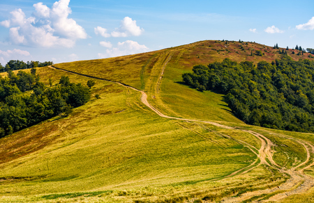 path through alpine mountain ridge. lovely early autumn landscape in fine sunny afternoon weather Stock Photo