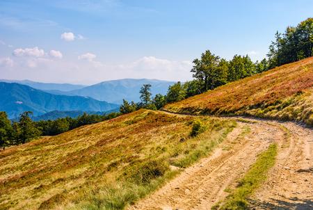 ブナの森の丘の中腹から未舗装の道路。豪華な風景の山の尾根、草が茂った斜面午後秋晴れ