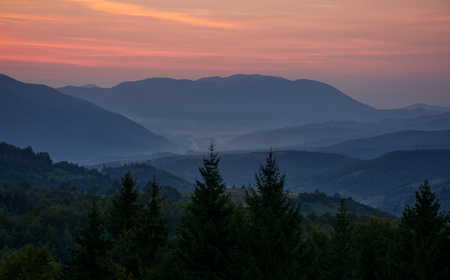 spectacular landscape with reddish sky at dawn in mountains and spruce tree top on foreground