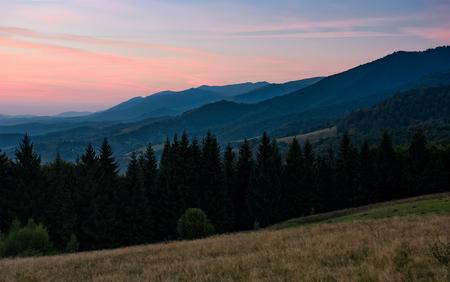 山中のトウヒ林と壮大な風景。初秋の夜明け空の赤みを帯びた見事な景観 写真素材