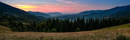 山の中のトウヒ林の風景の豪華なパノラマ。初秋の夕暮れ時に谷の上の赤みを帯びた空の景色