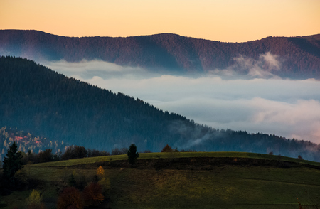 the rise of a cloud in mountains at dawn. gorgeous autumnal nature background Stock Photo