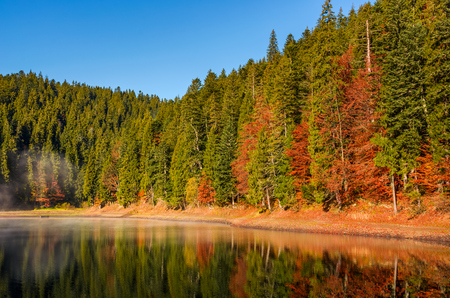 forest in autumn morning mist on the lake. beautiful and vivid scenery with colorful foliage and abstract reflections. fine weather condition under clear blue sky Stock Photo