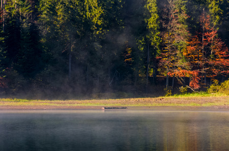 fog on the lake in autumnal forest. lovely background with colorful foliage and abstract textures