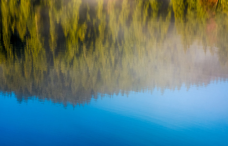 beautiful abstract nature background of lake surface reflecting spruce forest textures and blue sky