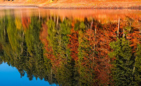 autumn forest reflection in lake. beautiful and vivid background with colorful foliage and abstract textures Stock Photo