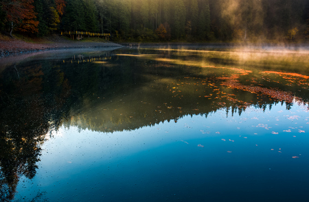 fog rise near the pier of forest lake in mountains at sunrise. absolutely stunning autumnal nature scenery with morning glowing mist in golden sun rays and reddish foliage sliding on water ripples Stock Photo
