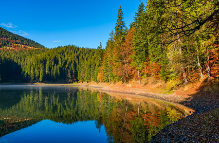 landscape with forest around the mountain lake. beautiful autumnal morning weather