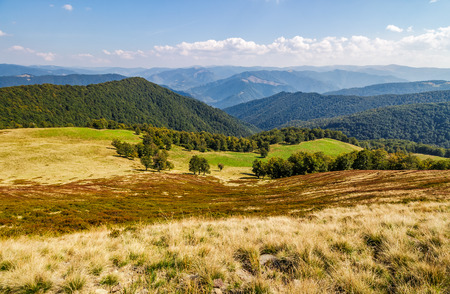산 능선의 상단에 언덕에 잔디 초원. 날씨가 좋은 산의 아름다운 단풍 풍경