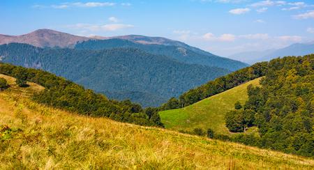 거리에서 붉은 피크 산와 언덕에 잔디 초원. 날씨가 좋은 산의 아름다운 단풍 풍경