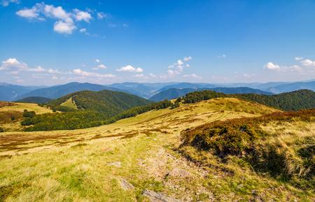山の尾根の上に丘の上の芝生の草原。好天に恵まれ山の素敵な紅葉風景 写真素材