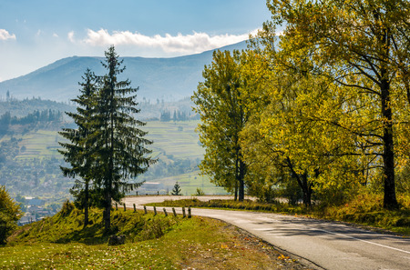 trees on serpentine on autumn day. lovely scenery in Carpathian countryside