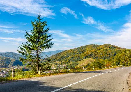 countryside road through the forest in mountains. lovely Carpathian countryside landscape in early autumn morning 版權商用圖片