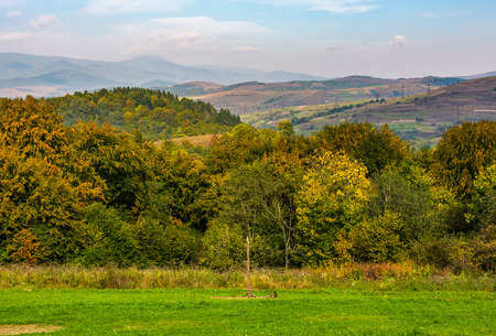 lovely Carpathian countryside with forest and rural fields on  mountains. beautiful scenery in early autumn morning