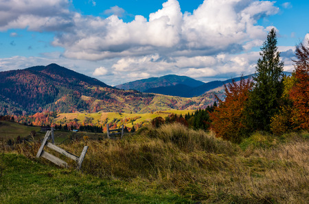 magnificent mountainous rural landscape in autumn. wooden fence in front of a coniferous and deciduous trees with red foliage on grassy hill. great sunny weather with gorgeous clouds on a blue sky Stock Photo