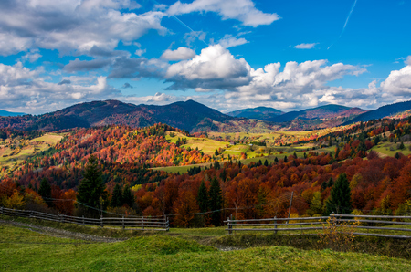 magnificent mountainous rural landscape in autumn. wooden fence along country road among  coniferous and deciduous trees with red foliage. great sunny weather with gorgeous clouds on a blue sky Stock Photo