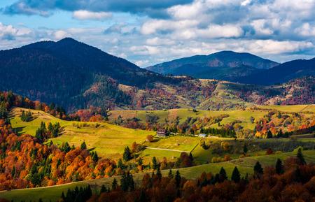 秋の壮大な山岳風景。農村地域の草が茂った丘に鮮やかな紅葉と針葉樹と落葉性の木。青い空に雲が豪華な素晴らしい天気 写真素材