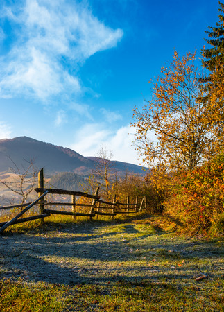 wooden fence near forest on hillside above the village valley. lovely autumnal countryside nature background in mountains at sunrise Stock Photo
